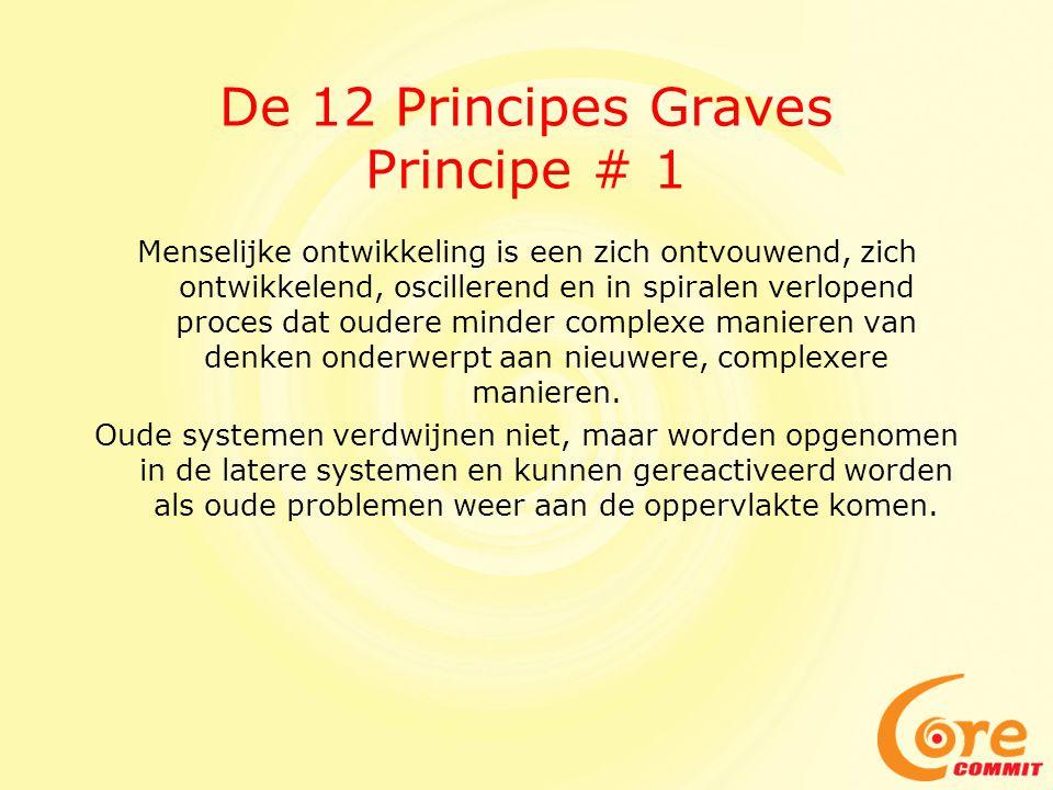 De 12 Principes Graves Principe # 1