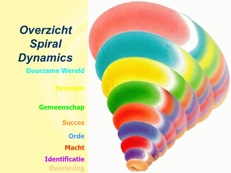 Overzicht Spiral Dynamics