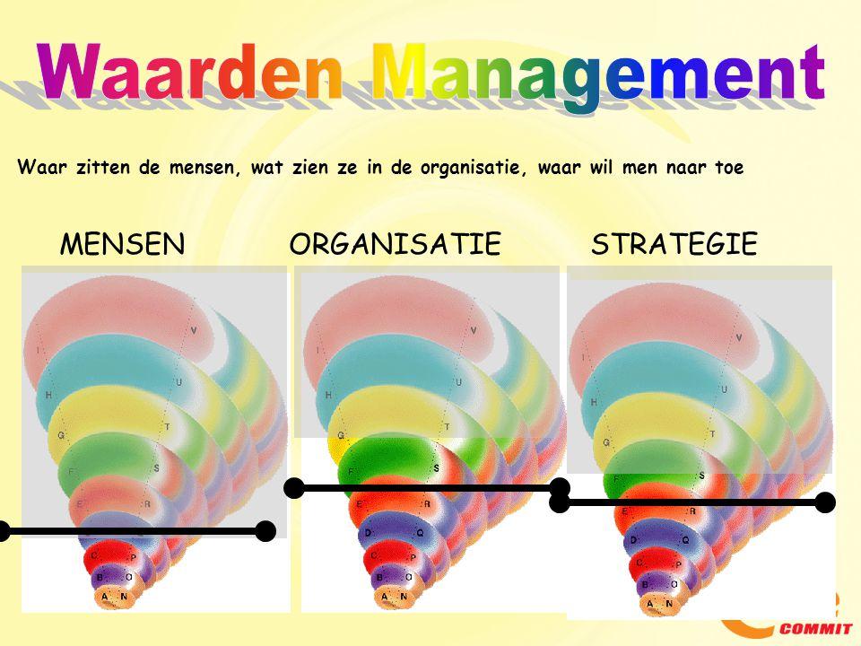 Waarden Management MENSEN ORGANISATIE STRATEGIE