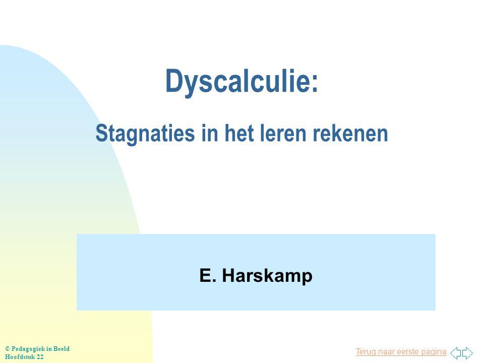 Dyscalculie: Stagnaties in het leren rekenen