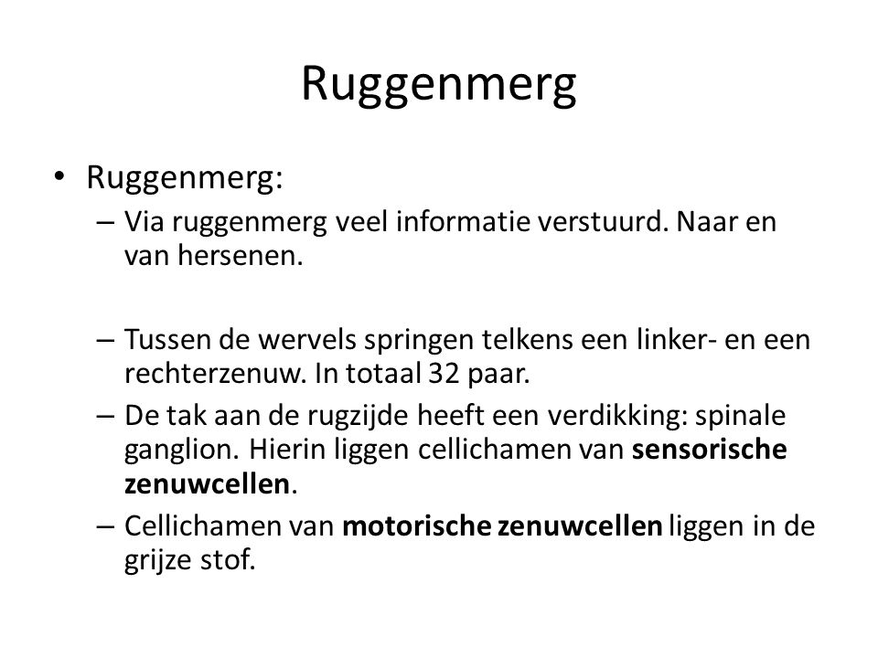 Ruggenmerg Ruggenmerg: