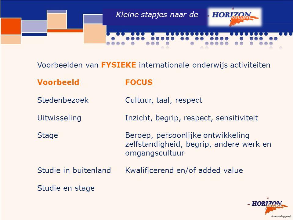 Kleine stapjes naar de Voorbeelden van FYSIEKE internationale onderwijs activiteiten. Voorbeeld FOCUS.