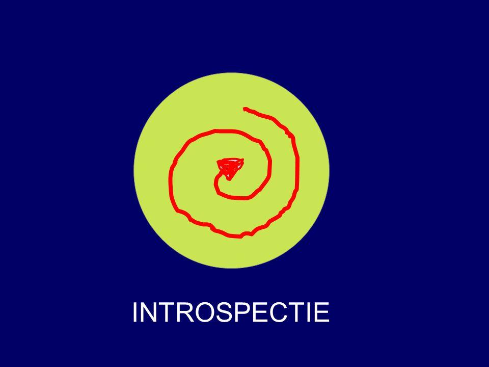 INTROSPECTIE