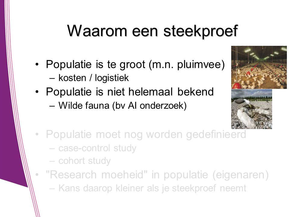 Waarom een steekproef Populatie is te groot (m.n. pluimvee)