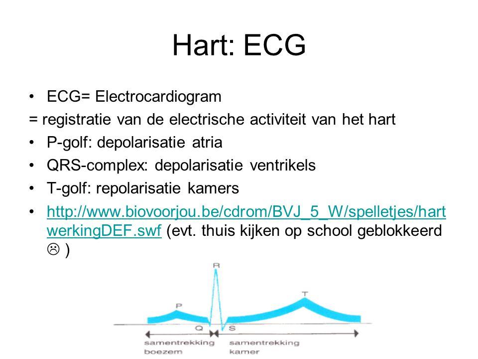 Hart: ECG ECG= Electrocardiogram