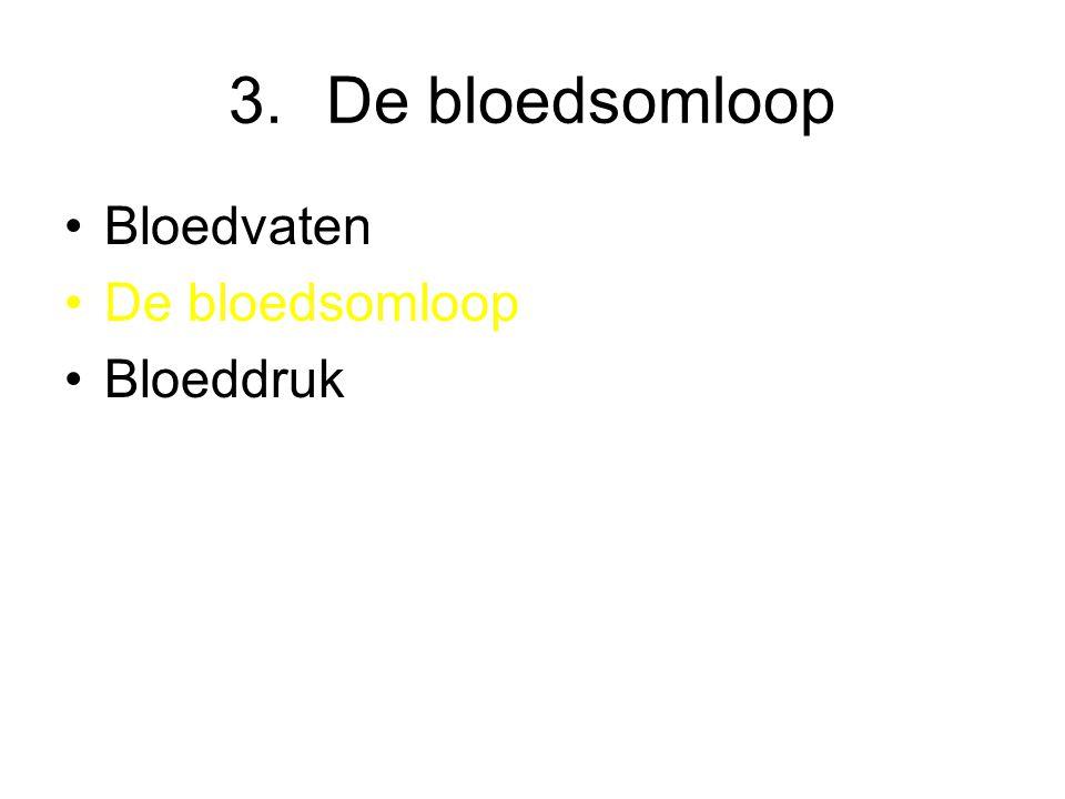 De bloedsomloop Bloedvaten De bloedsomloop Bloeddruk