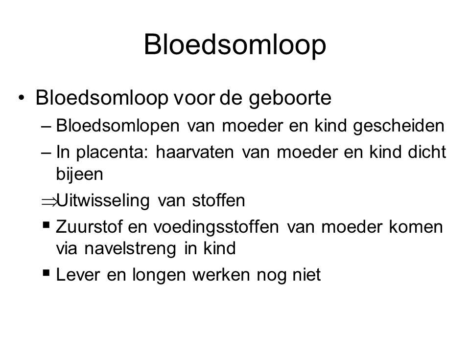 Bloedsomloop Bloedsomloop voor de geboorte