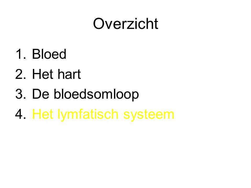 Overzicht Bloed Het hart De bloedsomloop Het lymfatisch systeem