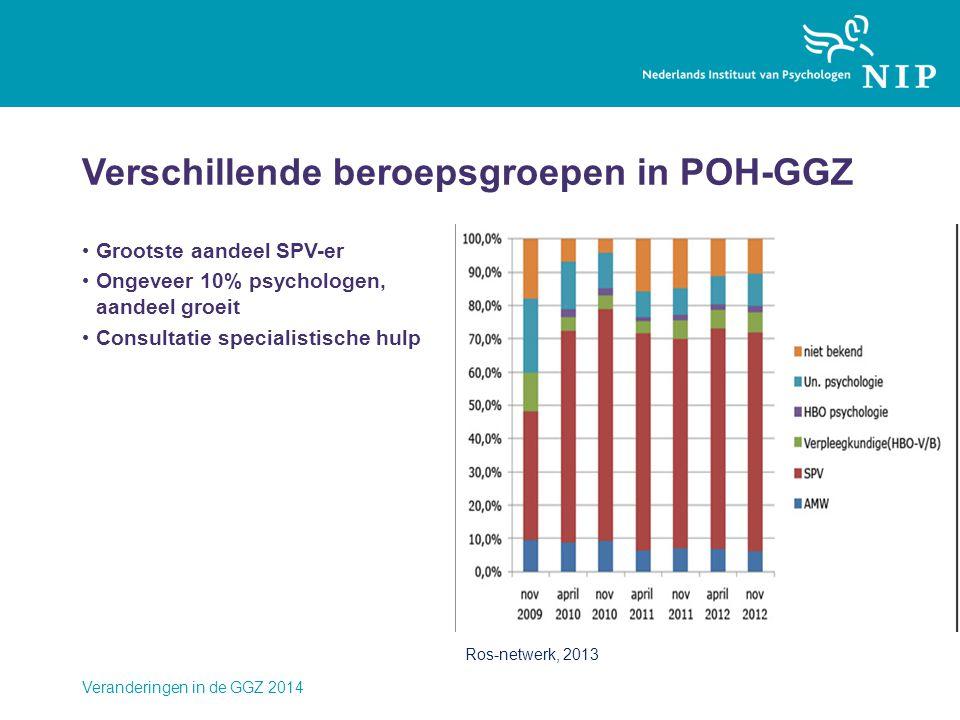 Verschillende beroepsgroepen in POH-GGZ