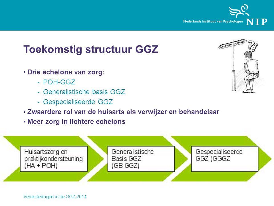 Toekomstig structuur GGZ