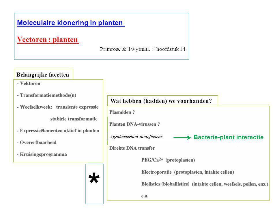 * Vectoren : planten Moleculaire klonering in planten