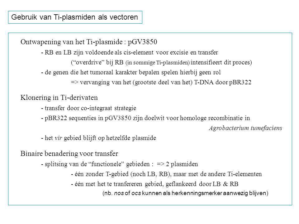 Gebruik van Ti-plasmiden als vectoren