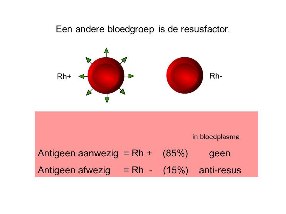 Een andere bloedgroep is de resusfactor.
