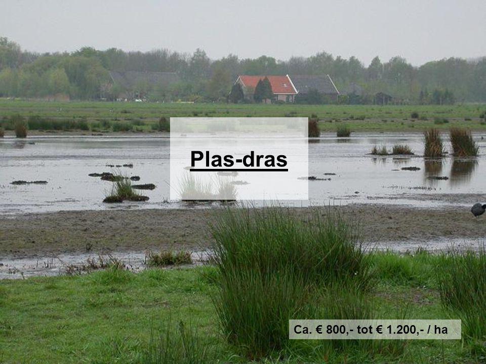 Plas-dras Ca. € 800,- tot € 1.200,- / ha 15