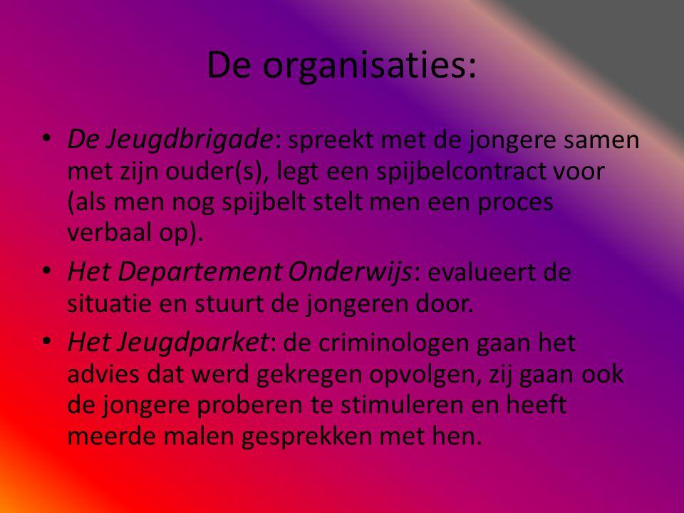 De organisaties: