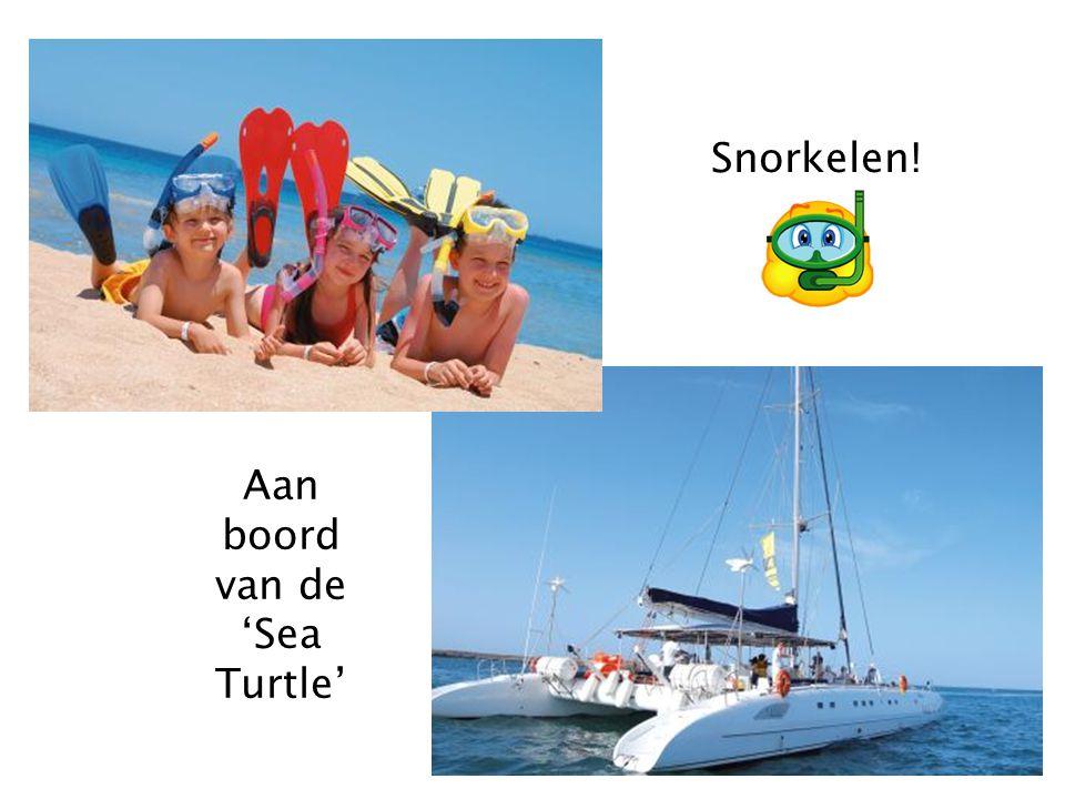 Aan boord van de 'Sea Turtle'