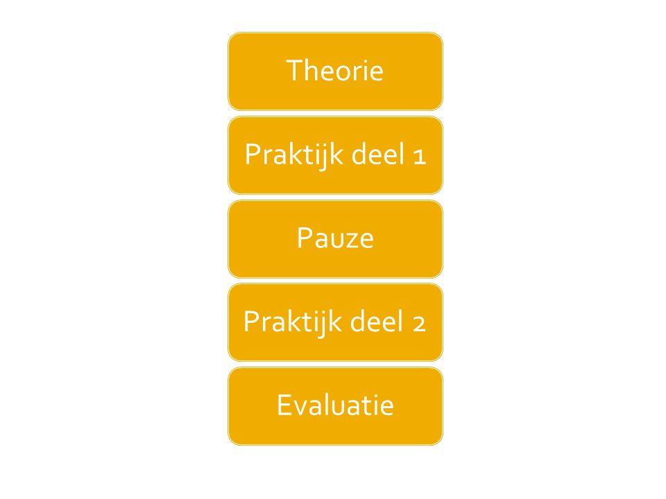 Theorie Praktijk deel 1 Pauze Praktijk deel 2 Evaluatie