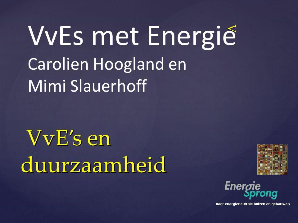 VvEs met Energie VvE's en duurzaamheid Carolien Hoogland en