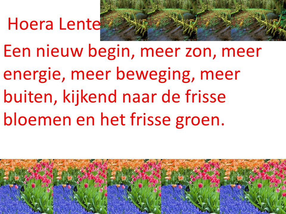 Hoera Lente, Een nieuw begin, meer zon, meer energie, meer beweging, meer buiten, kijkend naar de frisse bloemen en het frisse groen.