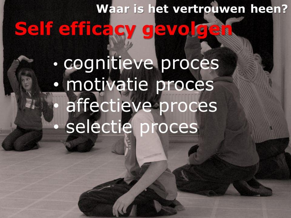Self efficacy gevolgen