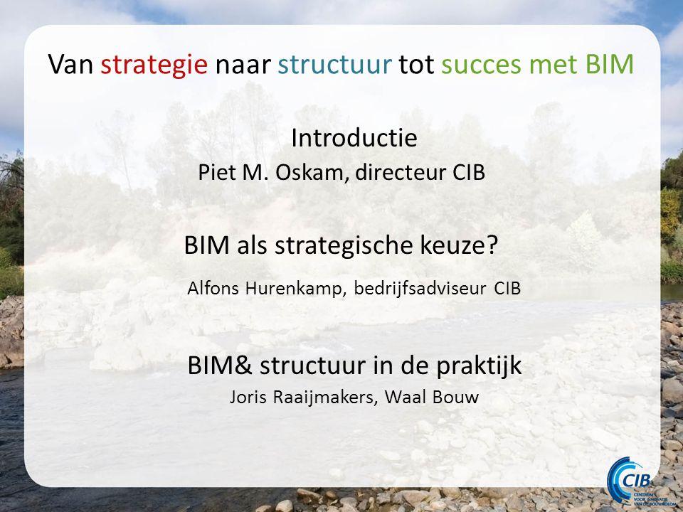 Van strategie naar structuur tot succes met BIM