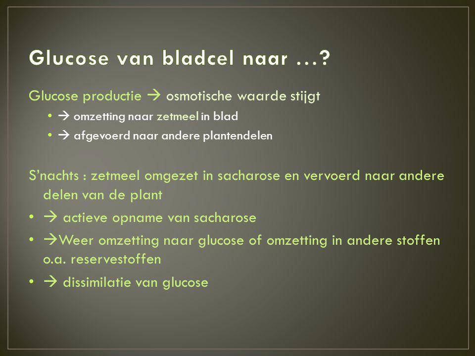 Glucose van bladcel naar …