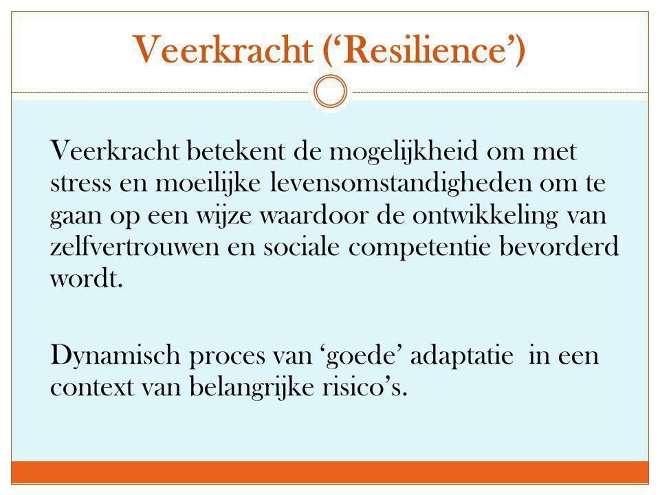 Veerkracht ('Resilience')