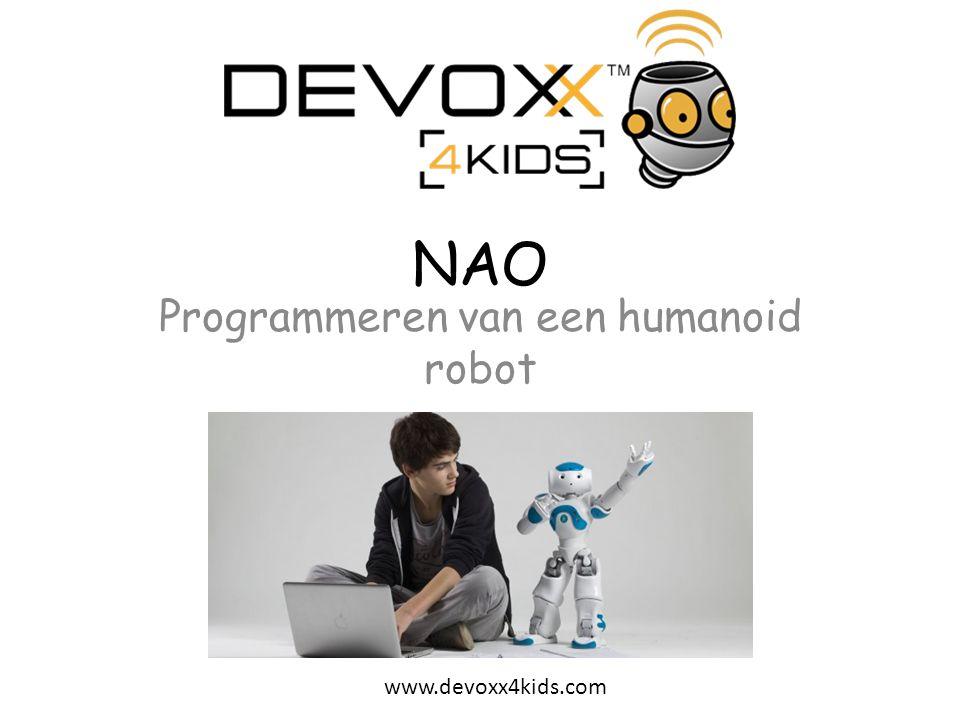 Programmeren van een humanoid robot