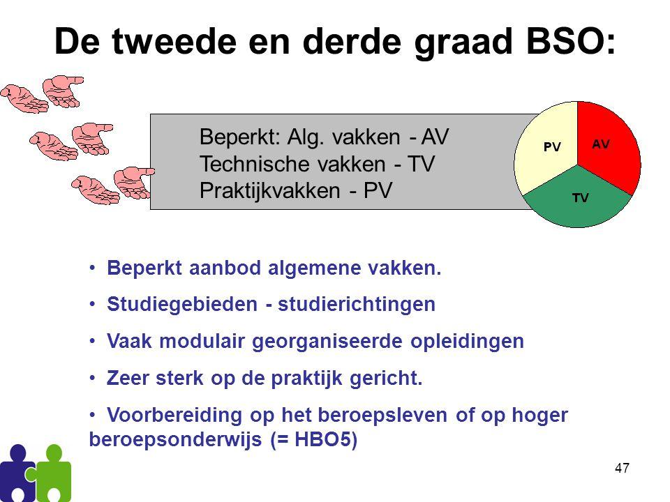 De tweede en derde graad BSO: