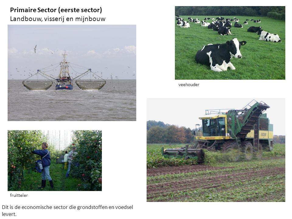 Primaire Sector (eerste sector) Landbouw, visserij en mijnbouw