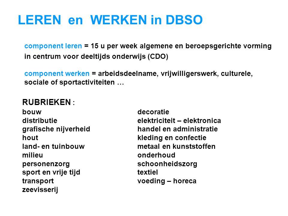 LEREN en WERKEN in DBSO RUBRIEKEN :