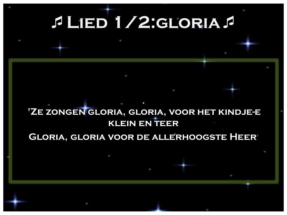 Lied 1/2:gloria Gloria, gloria voor de allerhoogste Heer