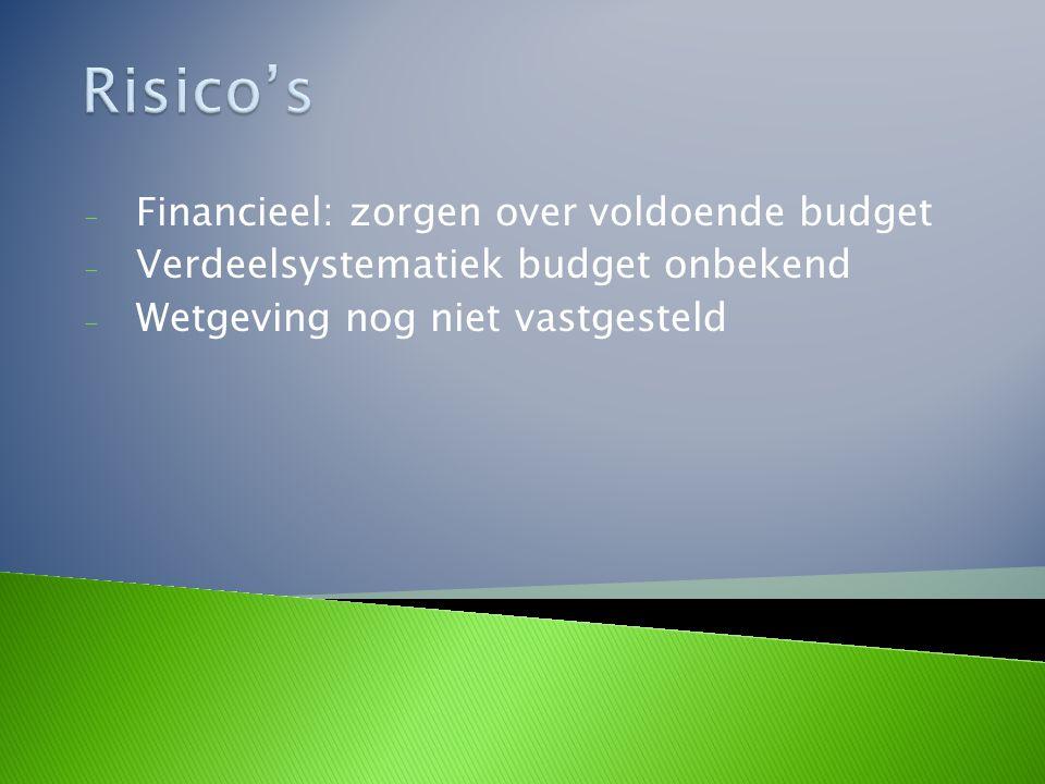 Risico's Financieel: zorgen over voldoende budget