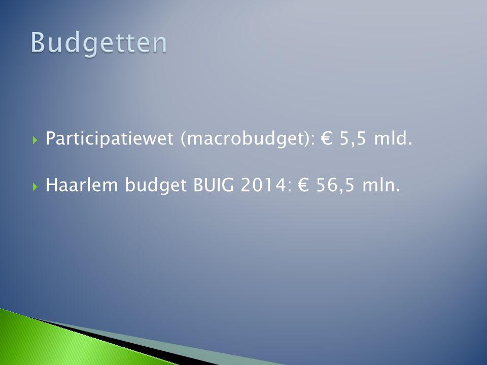 Budgetten Participatiewet (macrobudget): € 5,5 mld.