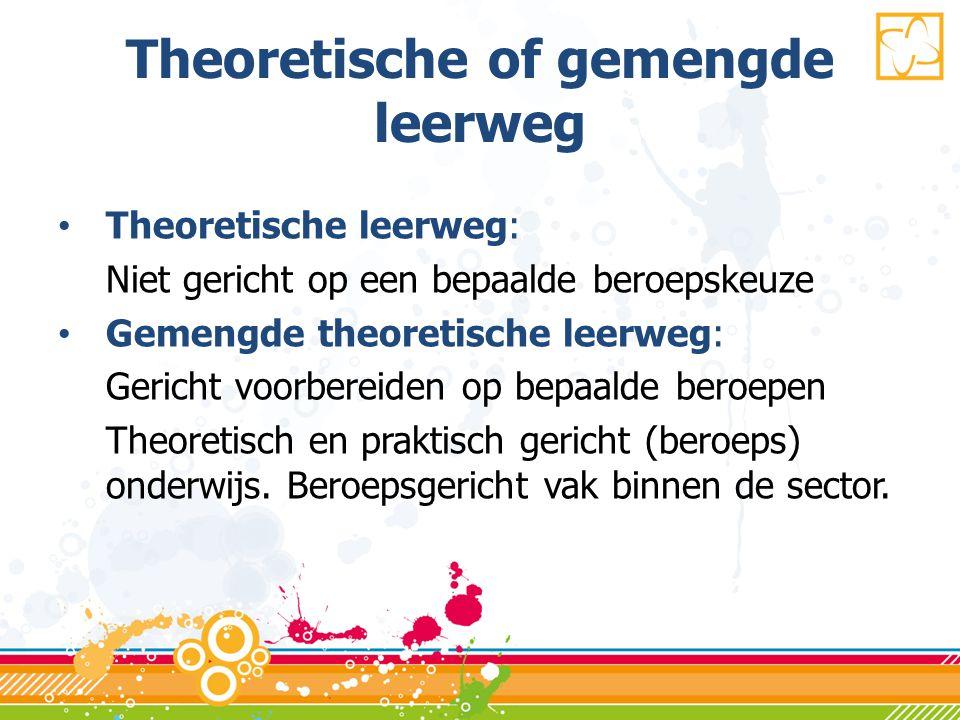 Theoretische of gemengde leerweg