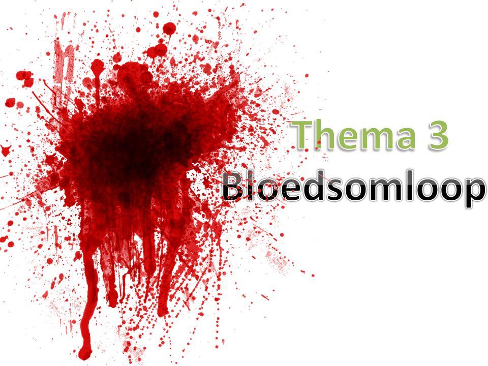 Thema 3 Bloedsomloop