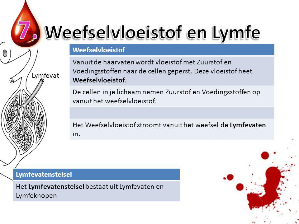 7. Weefselvloeistof en Lymfe