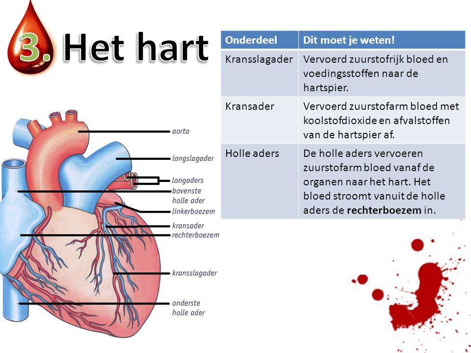 3. Het hart Onderdeel Dit moet je weten! Kransslagader