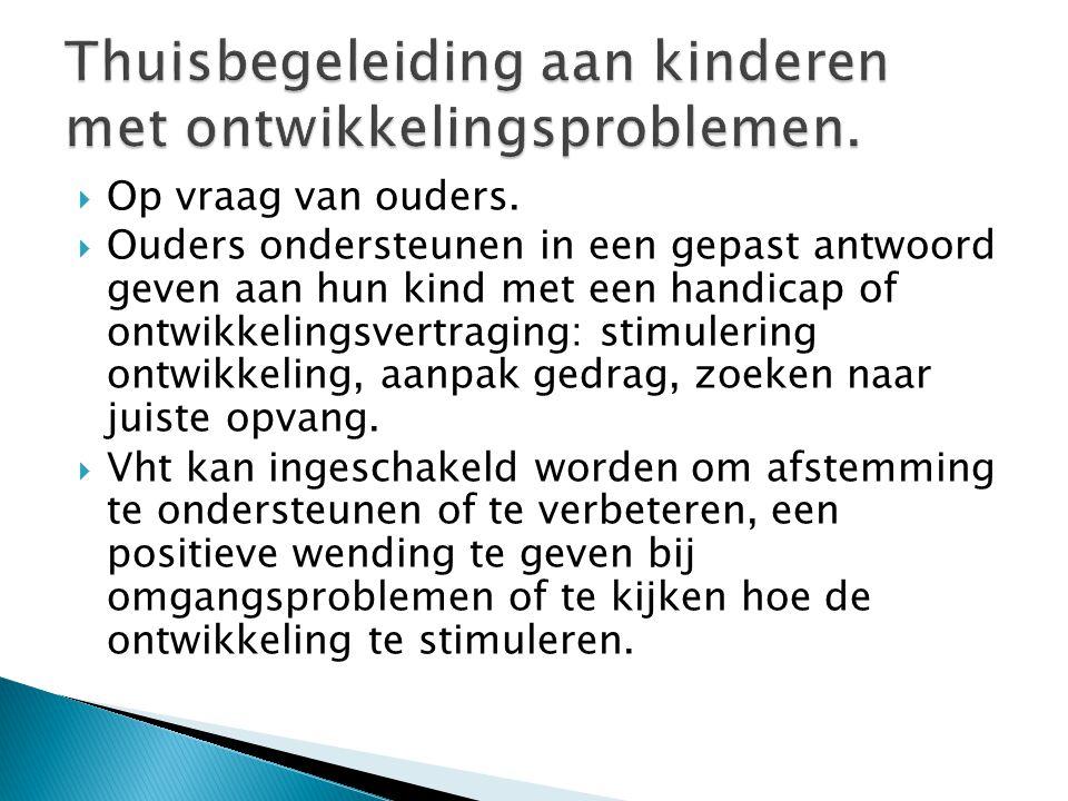 Thuisbegeleiding aan kinderen met ontwikkelingsproblemen.