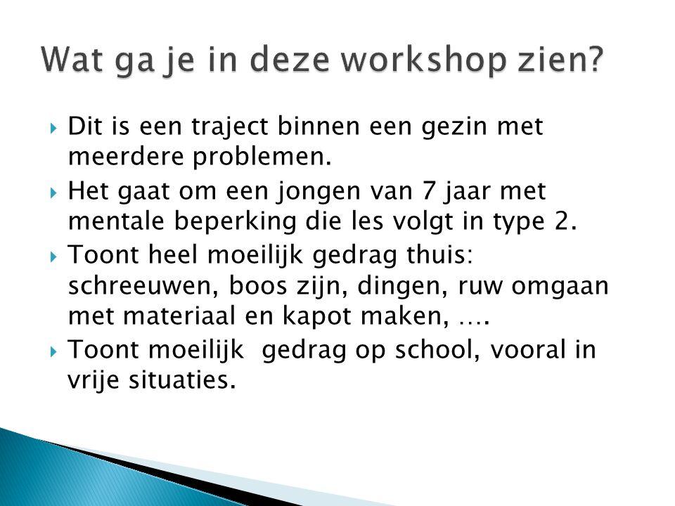Wat ga je in deze workshop zien