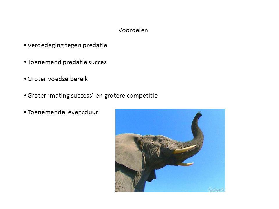 Voordelen Verdedeging tegen predatie. Toenemend predatie succes. Groter voedselbereik. Groter 'mating success' en grotere competitie.