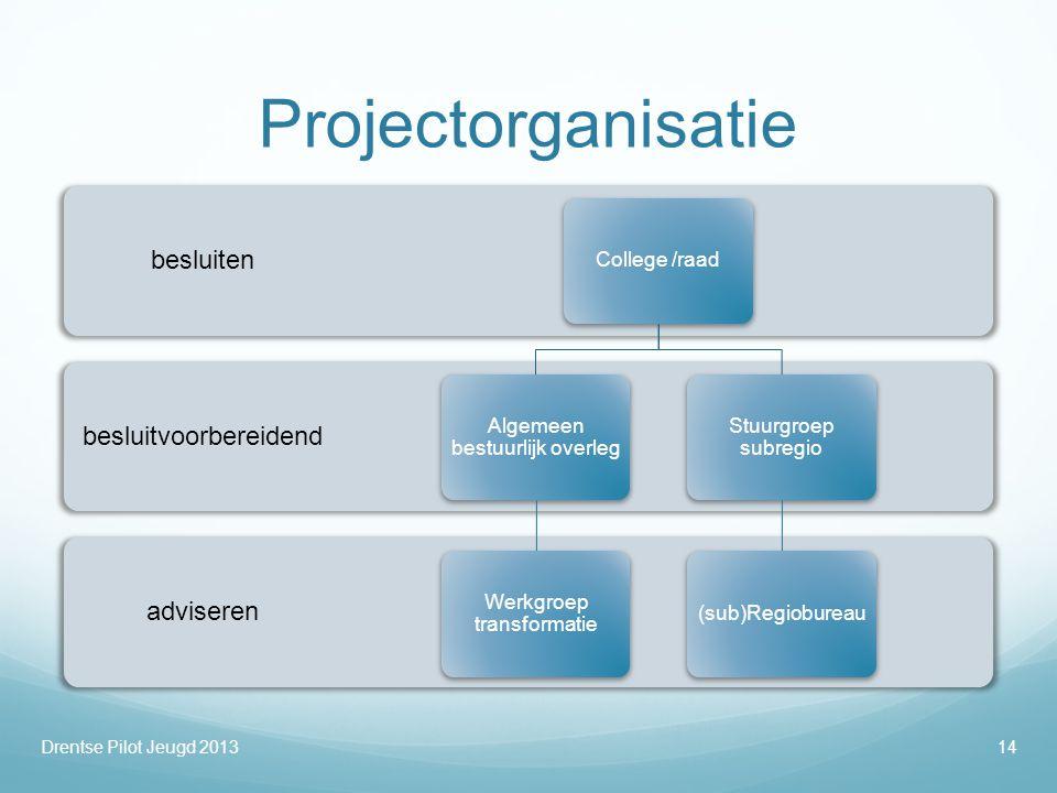 Projectorganisatie besluiten besluitvoorbereidend adviseren