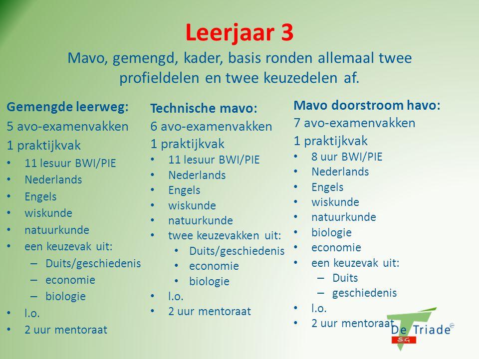 Leerjaar 3 Mavo, gemengd, kader, basis ronden allemaal twee profieldelen en twee keuzedelen af.