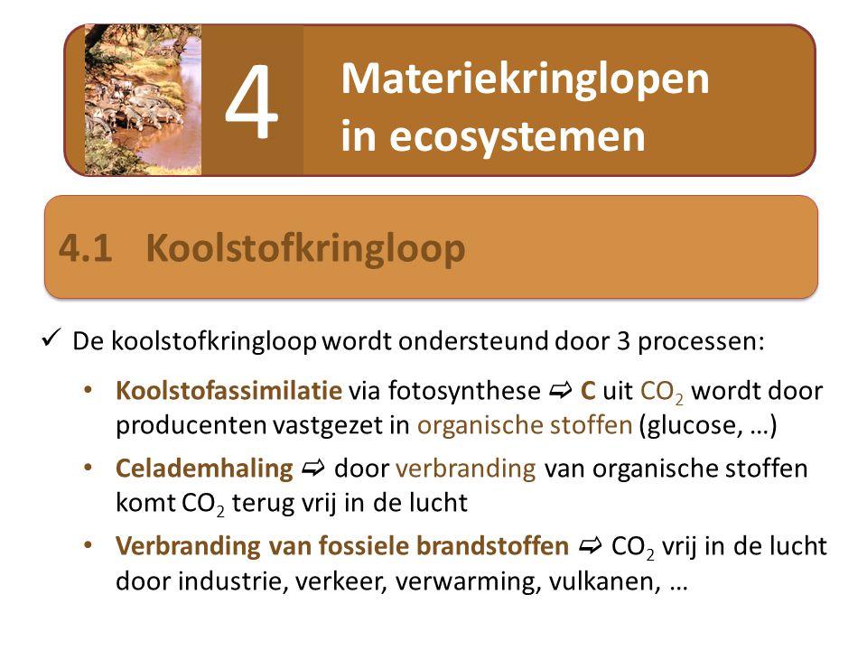 4 Materiekringlopen in ecosystemen 4.1 Koolstofkringloop