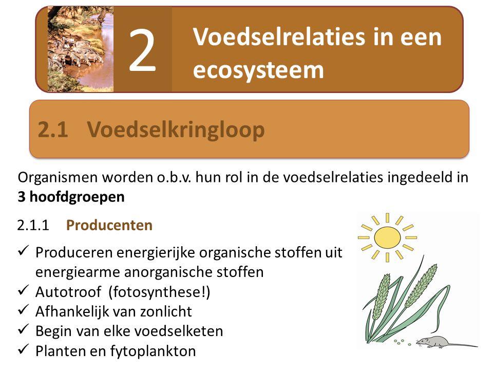 2 Voedselrelaties in een ecosysteem 2.1 Voedselkringloop