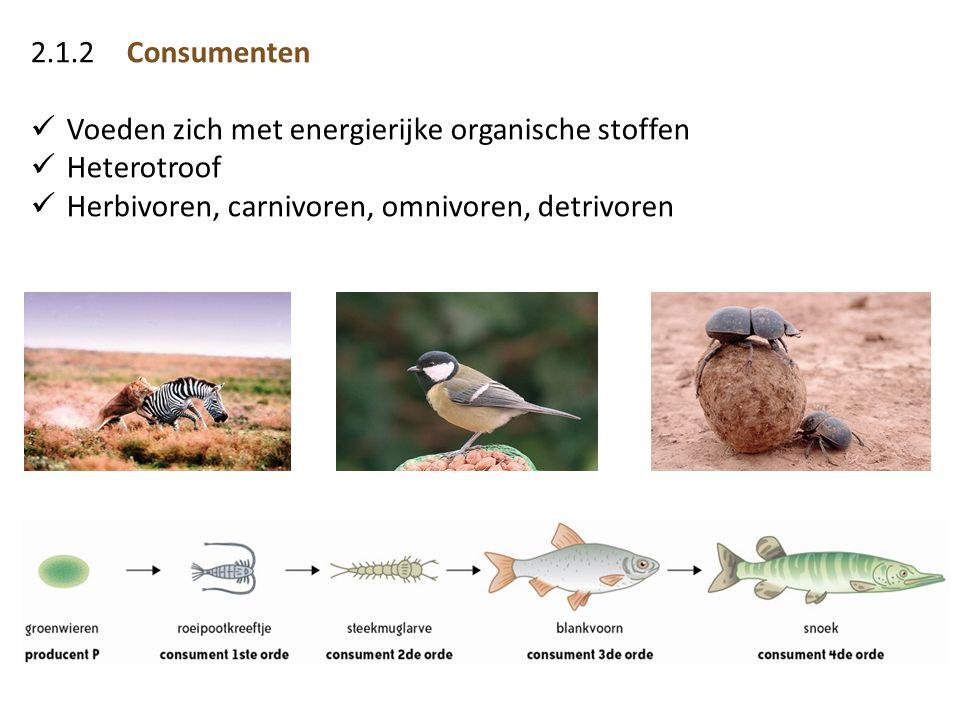 2.1.2 Consumenten Voeden zich met energierijke organische stoffen.