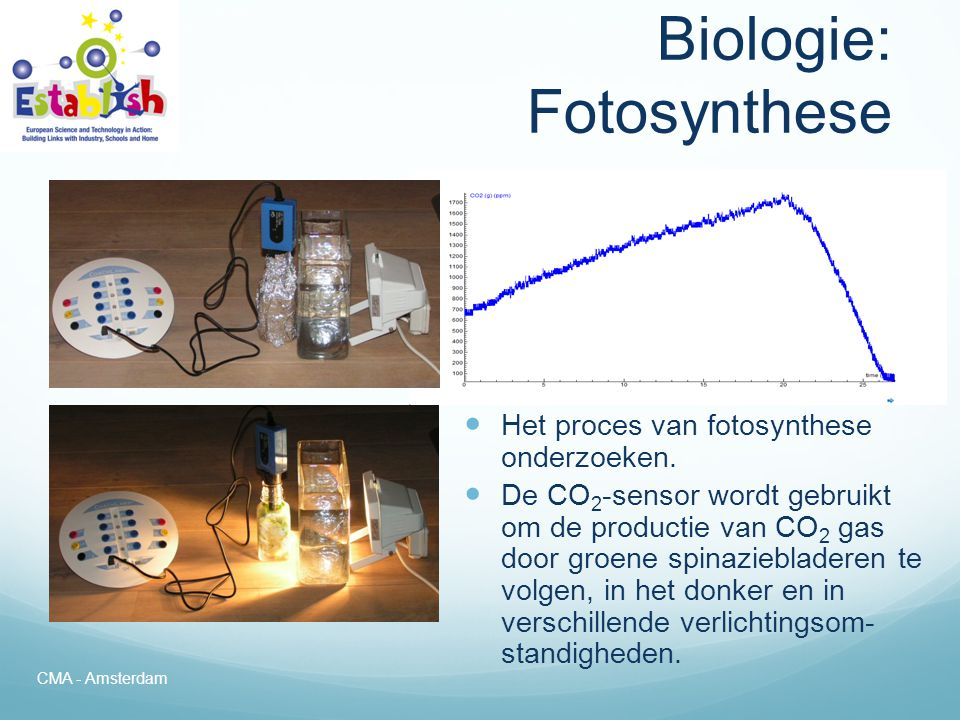 Biologie: Fotosynthese