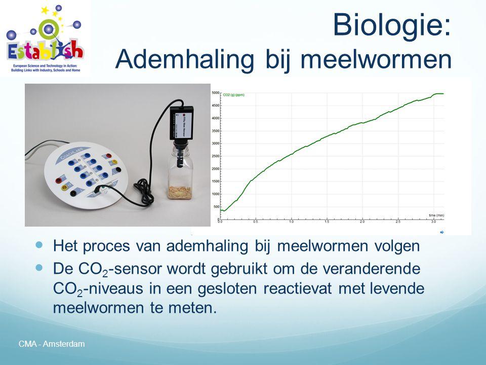 Biologie: Ademhaling bij meelwormen