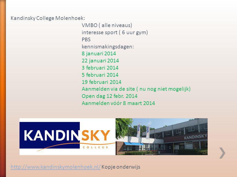 Kandinsky College Molenhoek: