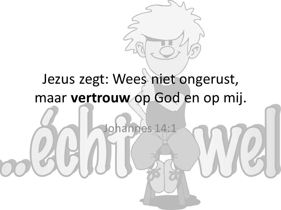 Jezus zegt: Wees niet ongerust, maar vertrouw op God en op mij.
